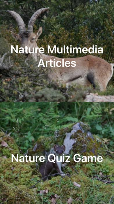 自然と野生生物紹介画像10