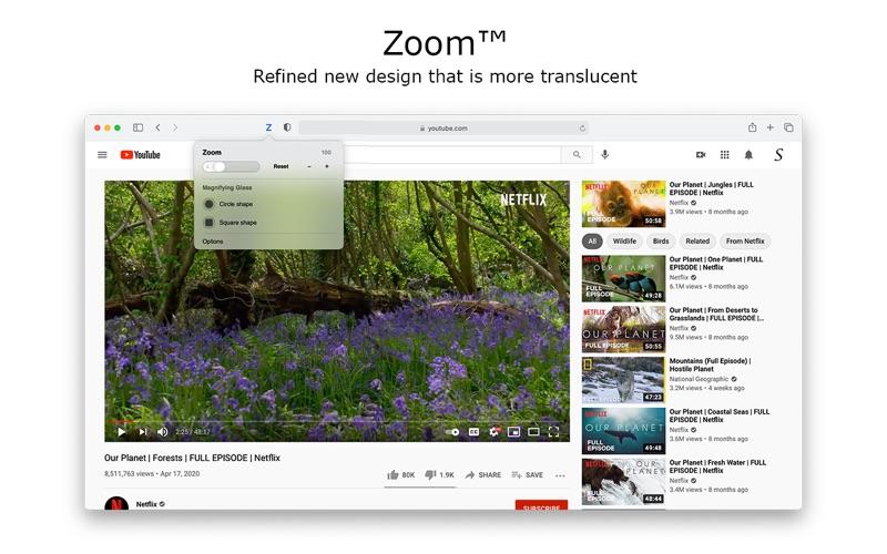 Zoom for Safari скриншот программы 4
