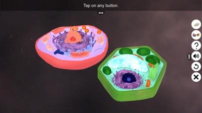 Prokaryotic & Eukaryotic cell screenshot 1