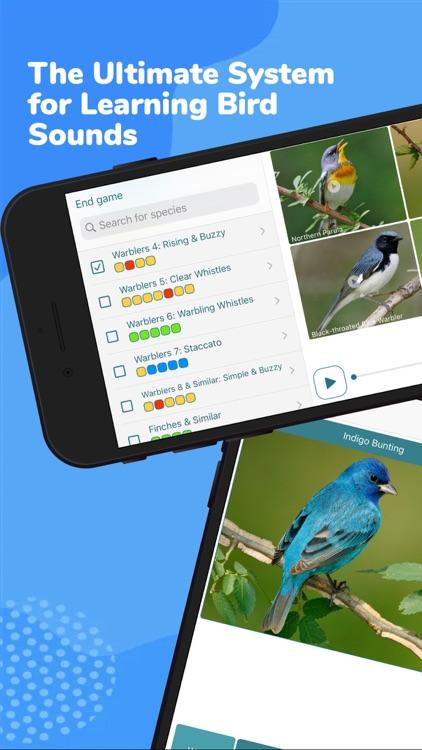 Larkwire Learn Bird Songs