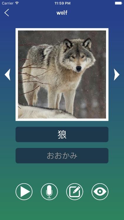 Japanese Word Flashcards Learn