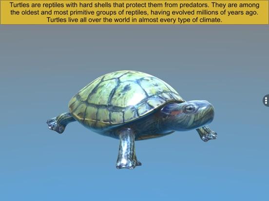 Diversity in Living: Reptilia screenshot 12