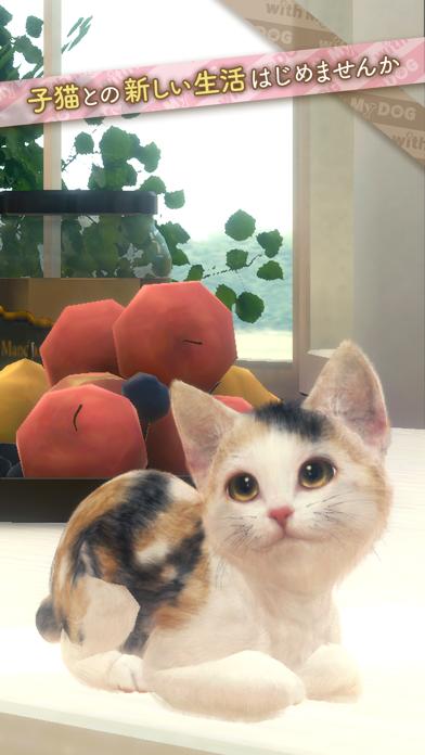 最新スマホゲームのwithMyCAT-猫とくらそう-が配信開始!
