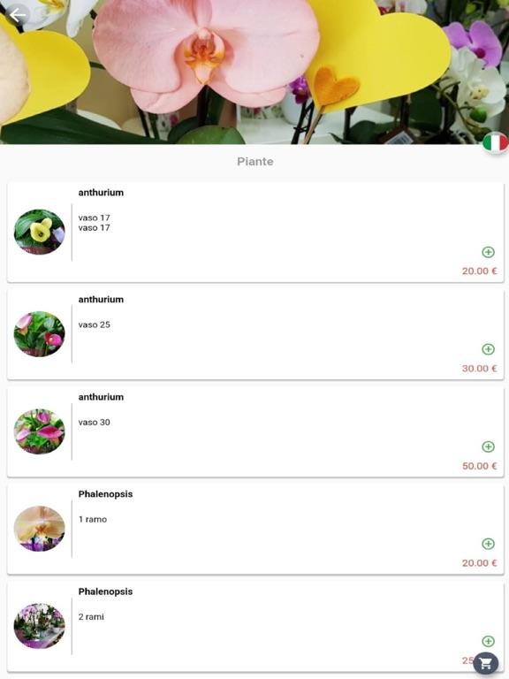 Floricoltura Ruggeri screenshot 6