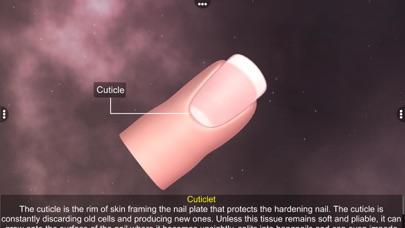 Skin: Integumentary System screenshot 7