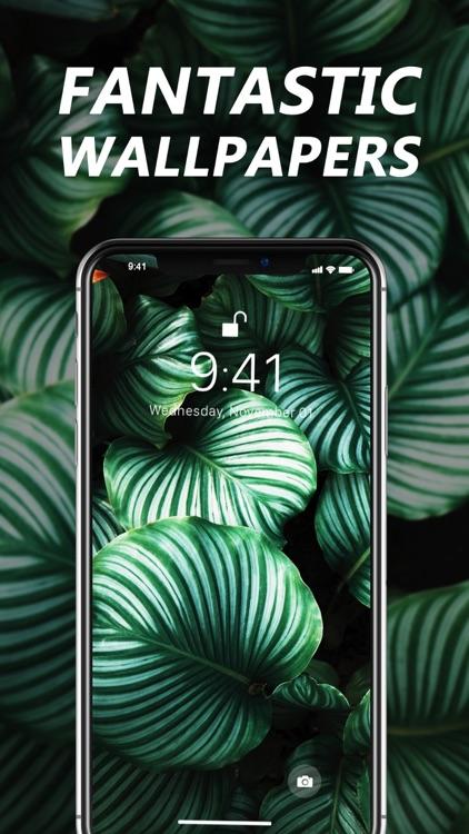 Wallpaper X – 4K HD wallpapers screenshot-5