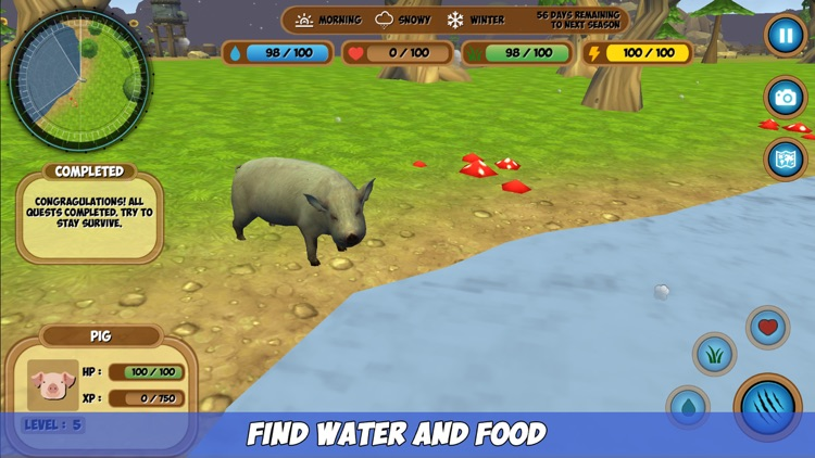 Pig Simulator screenshot-3