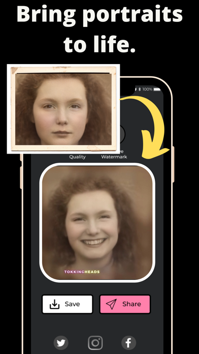 TokkingHeads: Portrait Video