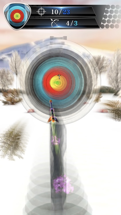 Archery Master : Shooting Game screenshot-8