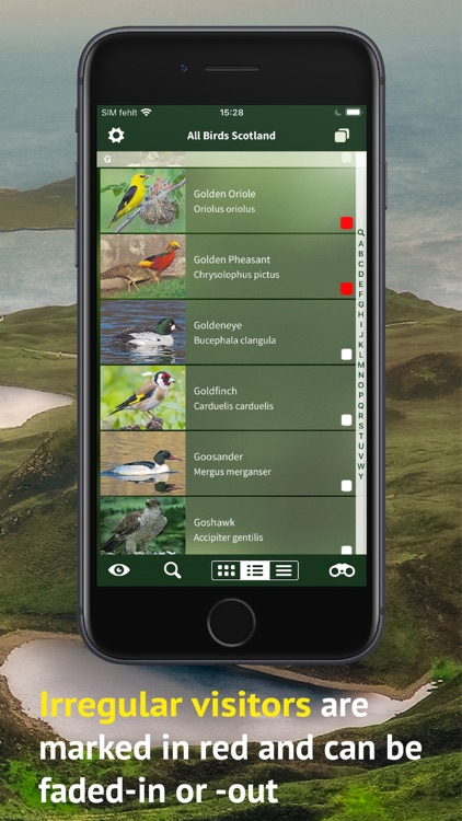 All Birds Scotland Photo Guide screenshot-5
