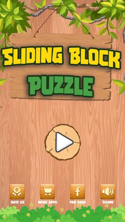 Sliding Block Puzzles screenshot-5