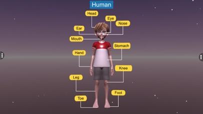 Diversity in Living: Mammalia screenshot 2