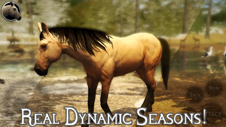 Ultimate Horse Simulator 2