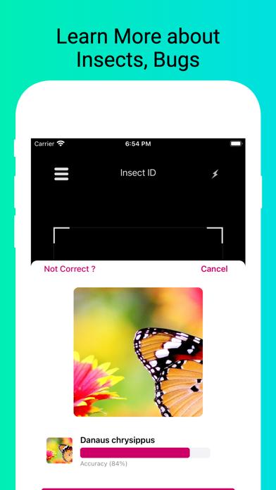 Insect Identifier - Scan Bugs screenshot 3