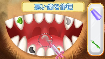 マーシャとくま 歯科手術と歯医者紹介画像8