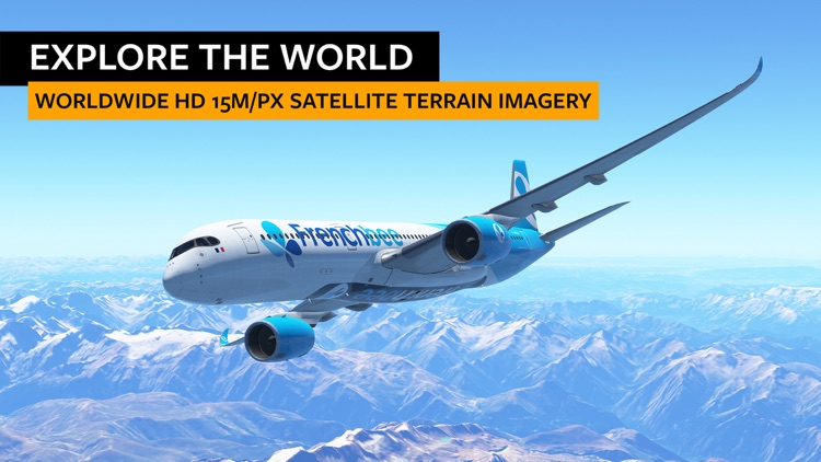 Infinite Flight Simulator screenshot-3