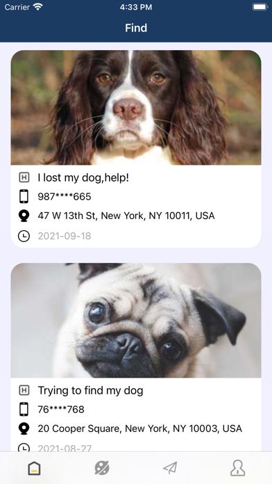 dogFind screenshot 1