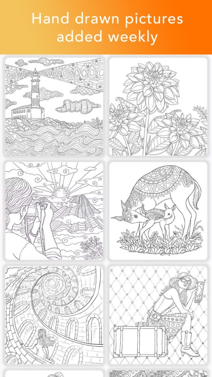Color Matters Adult Coloring