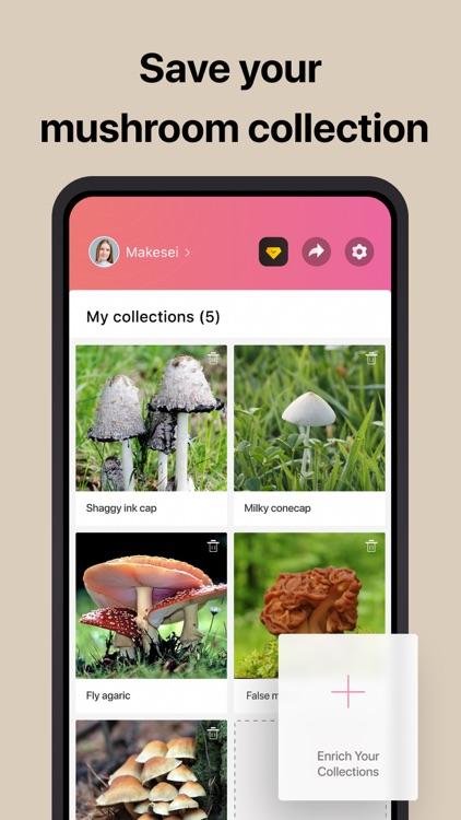 Picture Mushroom - Mushroom ID screenshot-5
