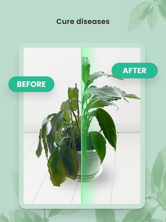 PlantIn: Plant Identifier screenshot 10