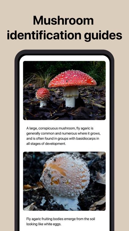 Picture Mushroom - Mushroom ID screenshot-3