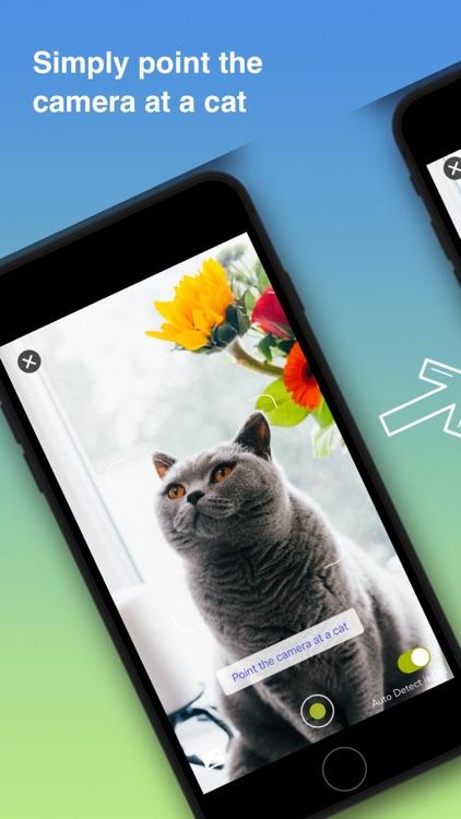 Cat Identifier - Kitty Scanner screenshot-0
