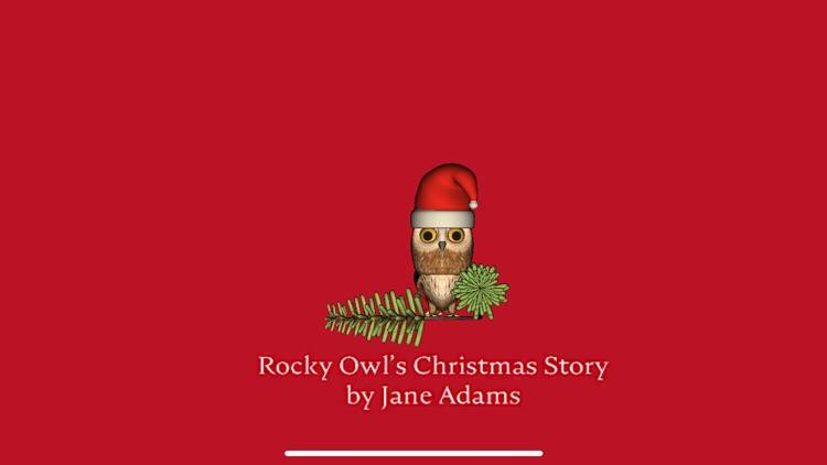 Rocky Owl's Christmas Story screenshot-0