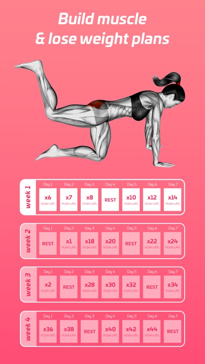 Fitness for women   Confit