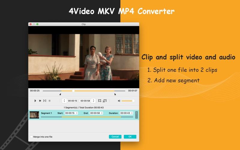 4Video MKV MP4 Converter
