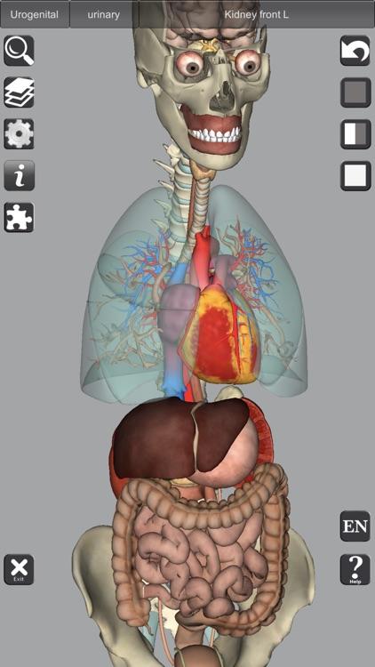 3D Anatomy Learning screenshot-5