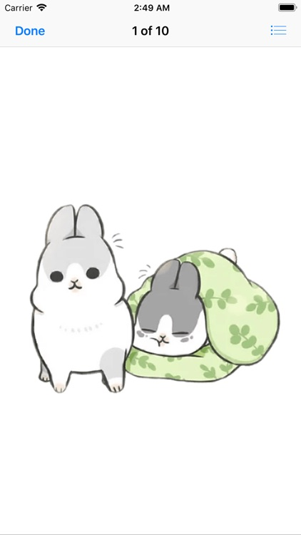 Machiko Rabbit Pack# 2