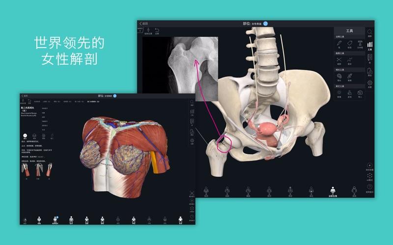 Complete Anatomy 21