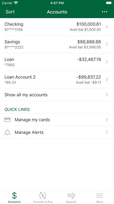 Palmetto State BankScreenshot of 3