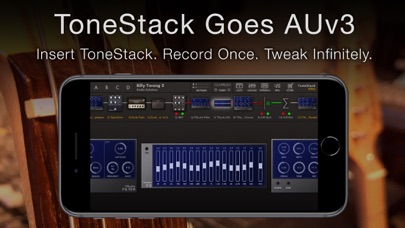ToneStack PRO Guitar Amps & FXのおすすめ画像2