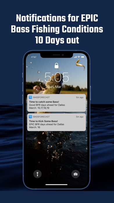 messages.download BassForecast software