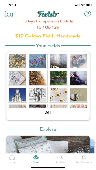 messages.download Fieldr - Fair Social Media software