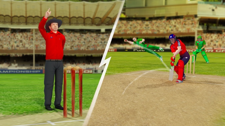 Play Cricket Games 2021 screenshot-4