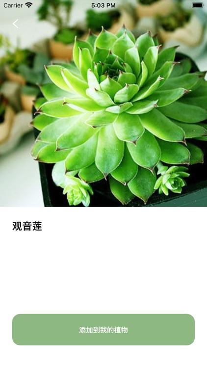 植物识别 - 拍照识别植物