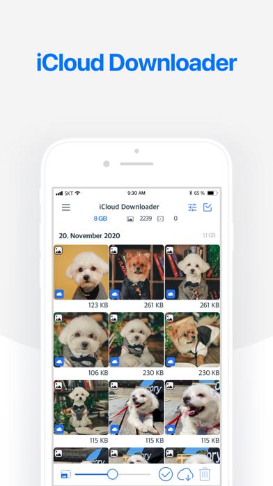 messages.download Photo Cleaner - Fotoreiniger software