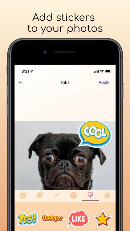 Photo Widget Customizer screenshot-7