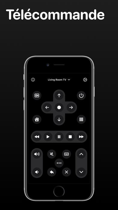 TV Remote (Télécommande)