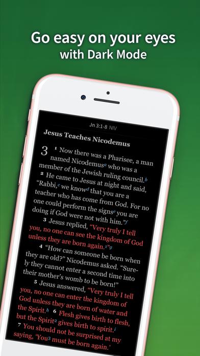 Bible App by Olive Treeのおすすめ画像8