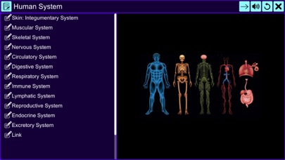 The Amazing Human System screenshot 2