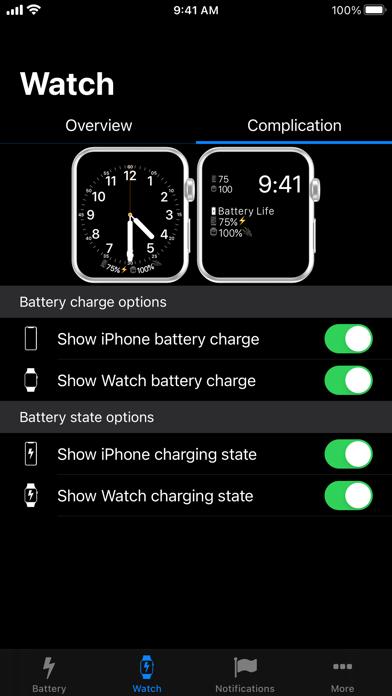 バッテリー・ライフ (Battery Life) ScreenShot5