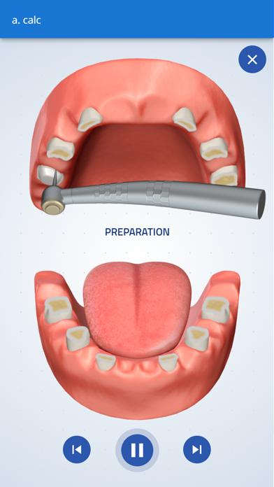 Consultation tool by Denticalc screenshot 2