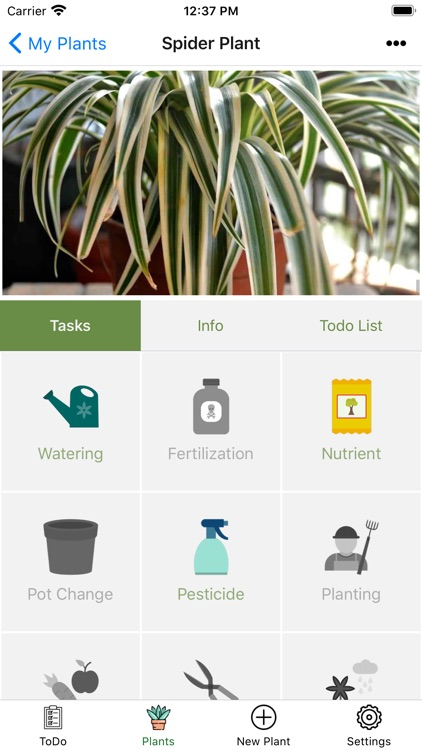 My Plant - Care your plant