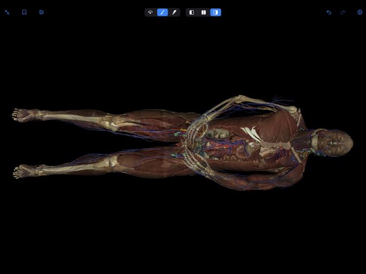 VH Dissector Pro screenshot-8