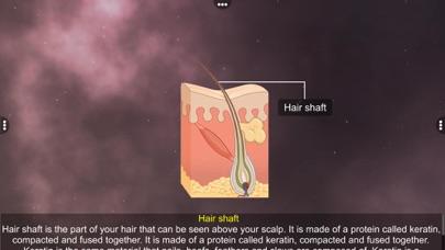 Skin: Integumentary System screenshot 5