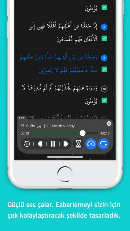 Memorize Quran (Lite) screenshot-6