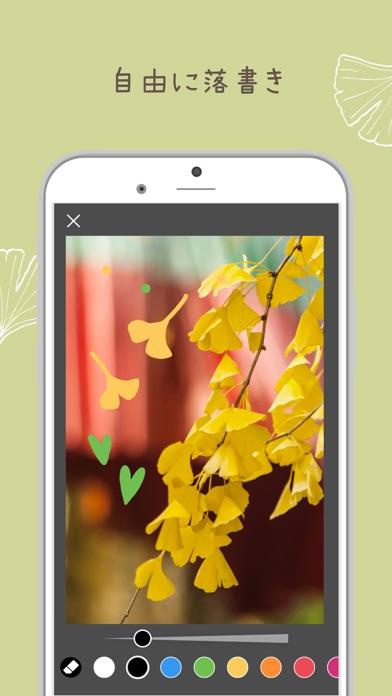 PicCollage 写真&動画コラージュ ScreenShot7